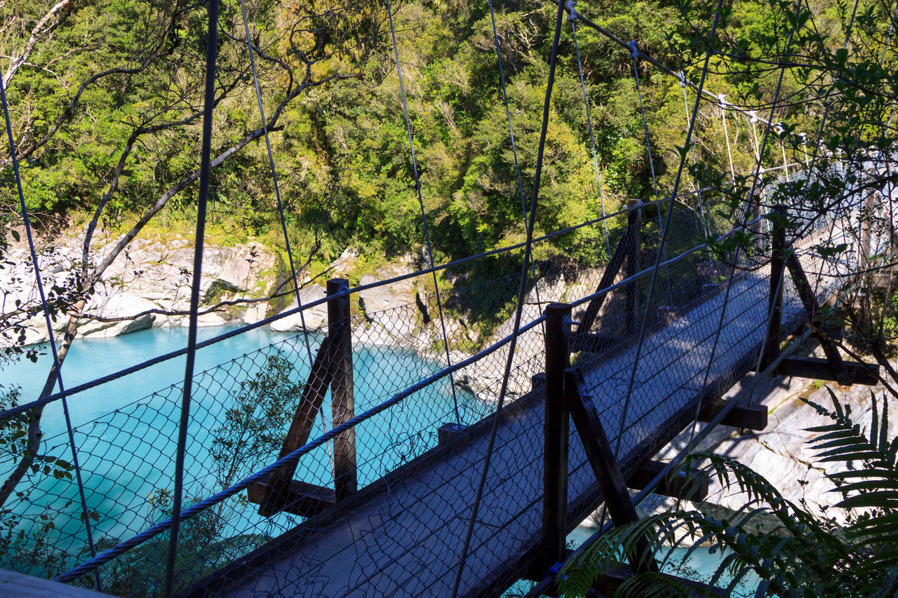 The blue waters at the Hokitika Gorge Architecture Beauty In Nature Blue Blue Water Bridge Day Eye4photography  EyeEm Best Shots EyeEm Nature Lover Forest Mountain Nature Outdoors Railing Scenics Tree Water