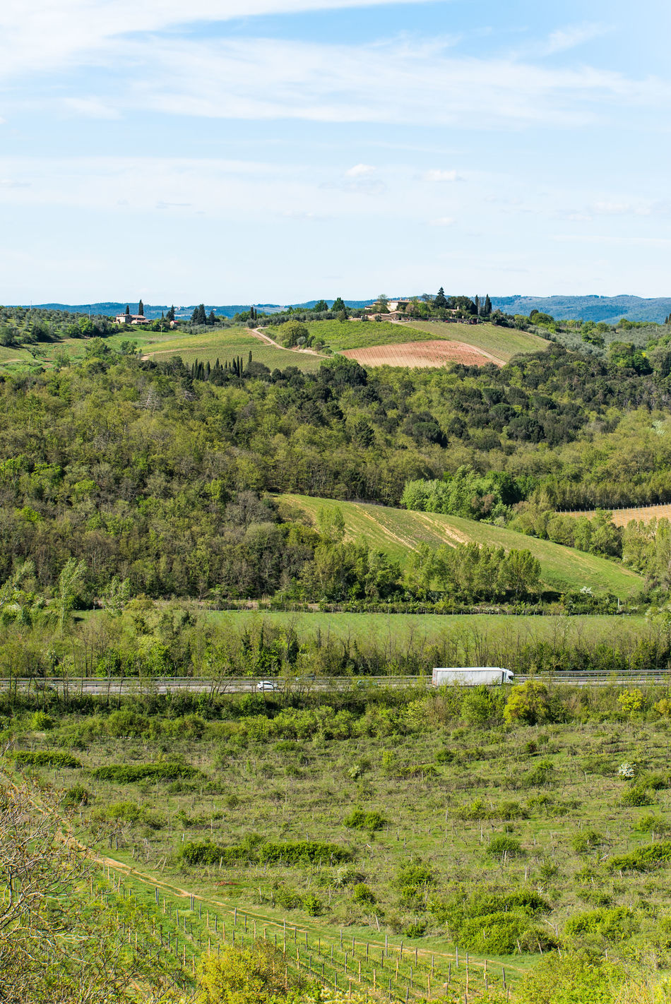 Agriculture Beauty In Nature Day Farm Field Green Color Growth Landscape Nature No People Outdoors Rural Rural Scene Scenics Siena Sky Sky And Clouds Tranquil Scene Tranquility Tuscany Wine Winery