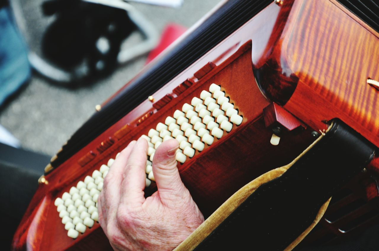 Beautiful stock photos of senior,  Accordion,  Adult,  Adults Only,  Arts Culture And Entertainment