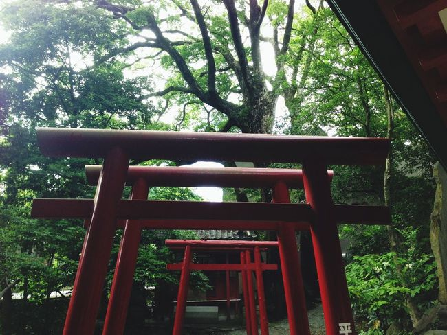 Relaxing Soul Searching Japan Photography Nature