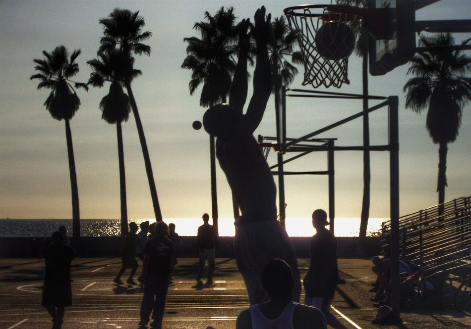 Beautiful stock photos of medical, Basketball, Basketball Hoop, Building Exterior, Cloud