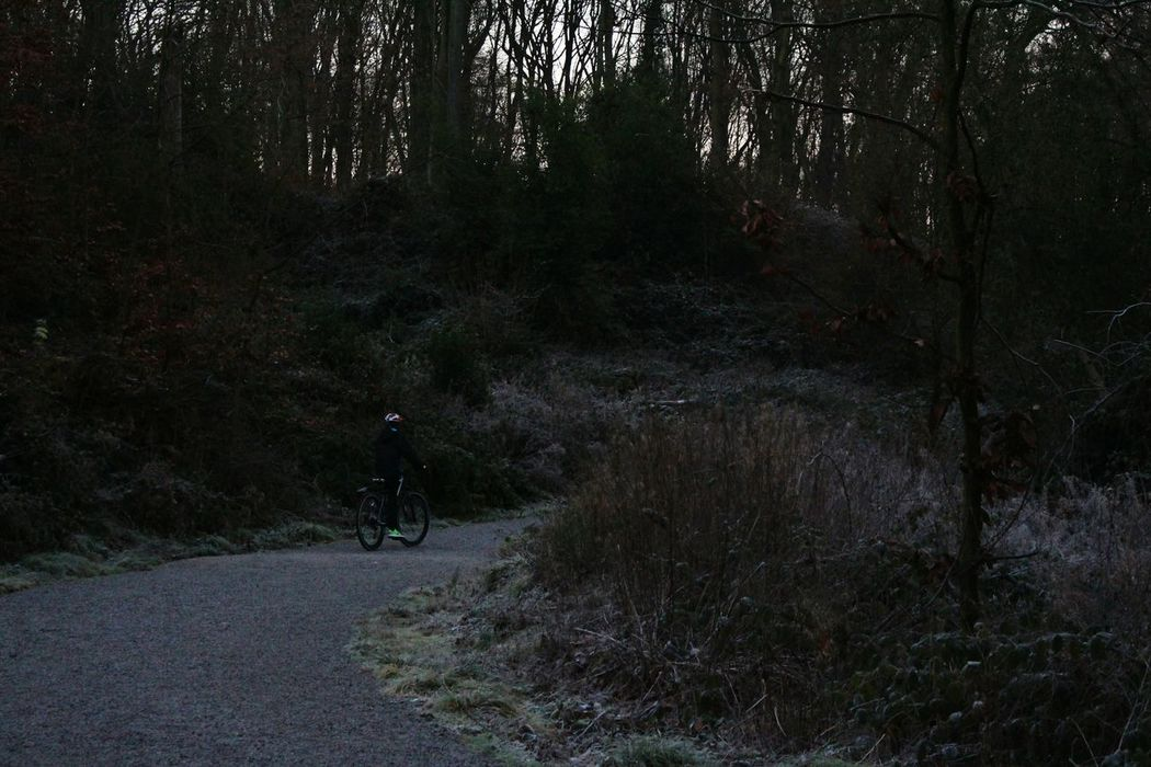 Snow Sports Tree Growth Nature Forest Outdoors Bike Biker Frosty Mornings Frosty Day Frost