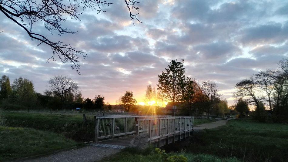 wieder einer dieser schönen Sonnenaufgänge, Morning Sky Morning Light Sonnenaufgang Beauty In Nature Landscape Nature Sunrise