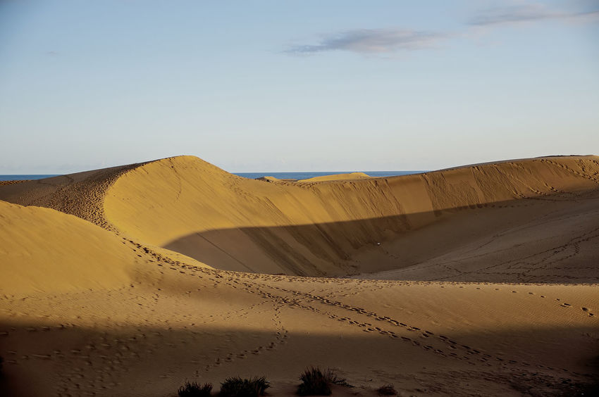 dunas maspalomas Dunas Gran Canaria Maspalomas Playa Del Ingles Arid Climate Beauty In Nature Brown Clear Sky Day Desert Landscape Nature No People Outdoors Physical Geography Remote Sand Sand Dune Scenics Sky Tranquil Scene Tranquility