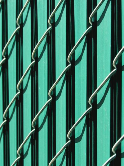 Fence Metal Green Slats Close-up No People Interlocked Outdoors Day