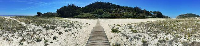 Panorámica en pasarela de madera en Islas Cíes, a los laterales el espacio protegido. Mobilephotography