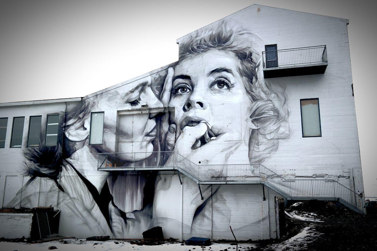 Art Is Everywhere Art Street Art Fantastic View Reykjavik House Panting