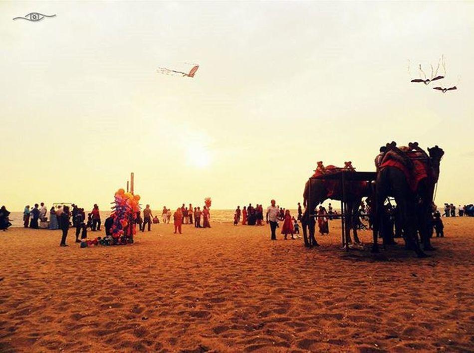 Kozhikode beach , a glimpse Calicutbeach Koyikodubeach Retinaphotoart Kites Camel