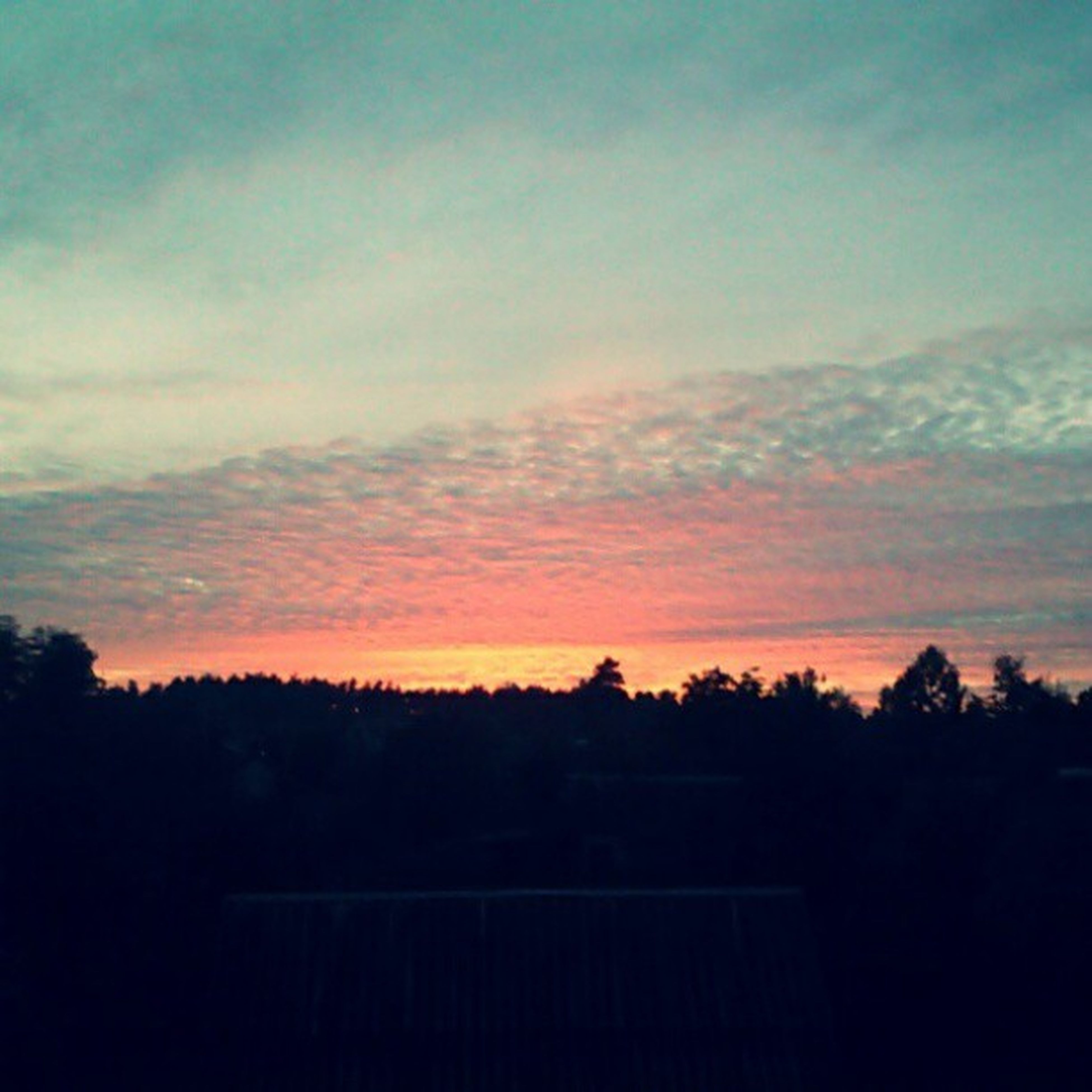 silhouette, sunset, tree, tranquil scene, tranquility, scenics, sky, beauty in nature, landscape, nature, idyllic, orange color, cloud - sky, dark, copy space, dusk, cloud, non-urban scene, outdoors, outline