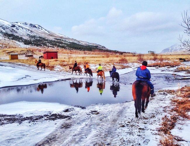 Iceland Iceland Trip Travel IPhoneography Iphoneonly IPhone Photography Iphonephotography IPhoneographer Superciaowei The Great Outdoors - 2016 EyeEm Awards 2016 EyeEm Awards EyeEmBestPics