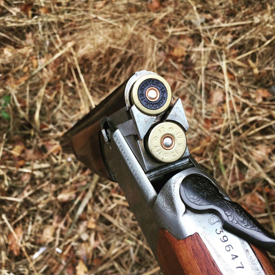 Close-up Weapon Outdoors Shooting Pheasant Shotgun Rural Nature Autumn