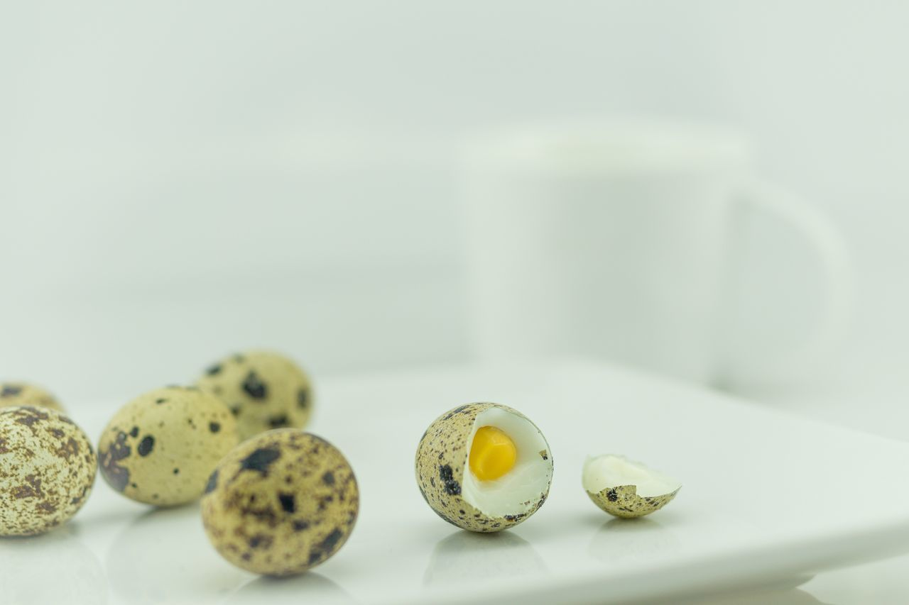 Quail Eggs Breakfast Breakfast Time Wachteleier Egg Eier Coffe Food Food And Drink Foodporn Foodphotography White Background Healthy Eating Macro Indoors  Table Close-up Macro Photography