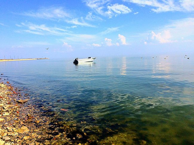 Azovskoe More Sea Sky Water Nature Seascape Beauty In Nature Море азовскоеморе Азов Azovsea