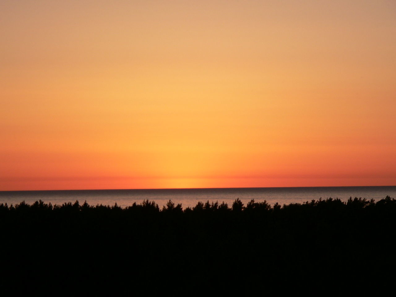 Sunset Lithuania, Palanga Baltic Sea Nature Beach Beauty In Nature Horizon Over Water Idyllic Nature No People Orange Color Outdoors Palanga Red Sky Scenics Sea Silhouette Sky Sunset Tranquil Scene Tranquility Water