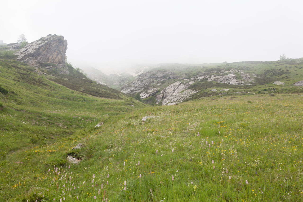 mountain, nature, beauty in nature, outdoors, grass, landscape, day, scenics, no people, wilderness, sky, scenery