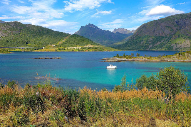 New Bogen on the Lofoten Archipelago in Norway Beauty In Nature Bogen Calm Lake Lakeshore Lofoten Archipelago Mountain Norway Outdoors Scenics Tranquil Scene Tranquility Trip Water