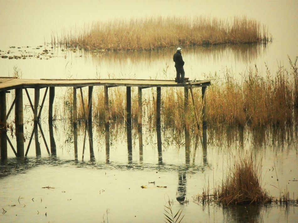 Eftenigolu Nature_collection Loneliness
