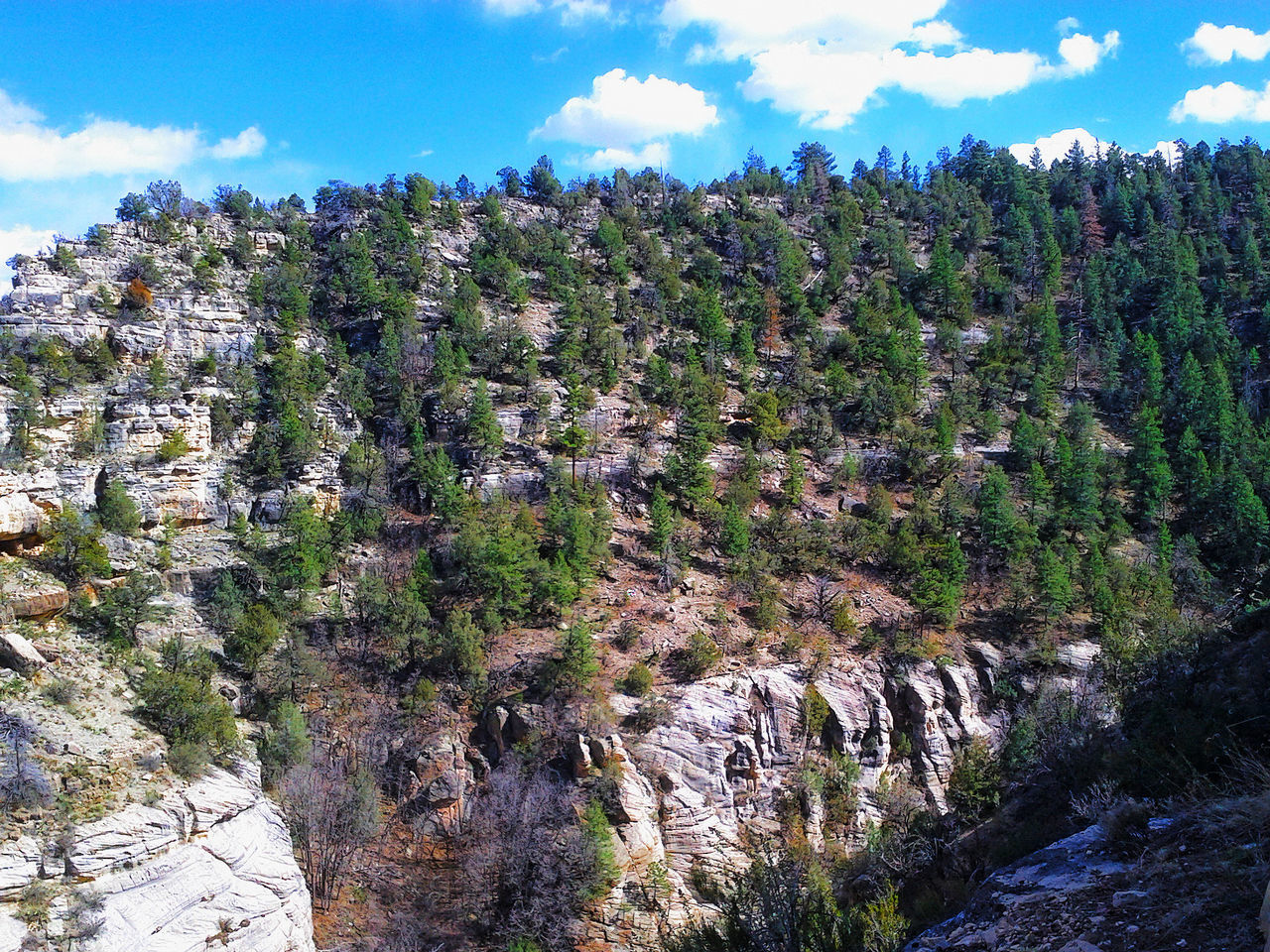 Adventures Anasazi Arizona Cliff Exploring Forest Geology Majestic Mountain Nature Outdoor Physical Geography Rock Rock - Object Rock Formation Rocky Rough Ruins Scenics State Park  Walnut Canyon