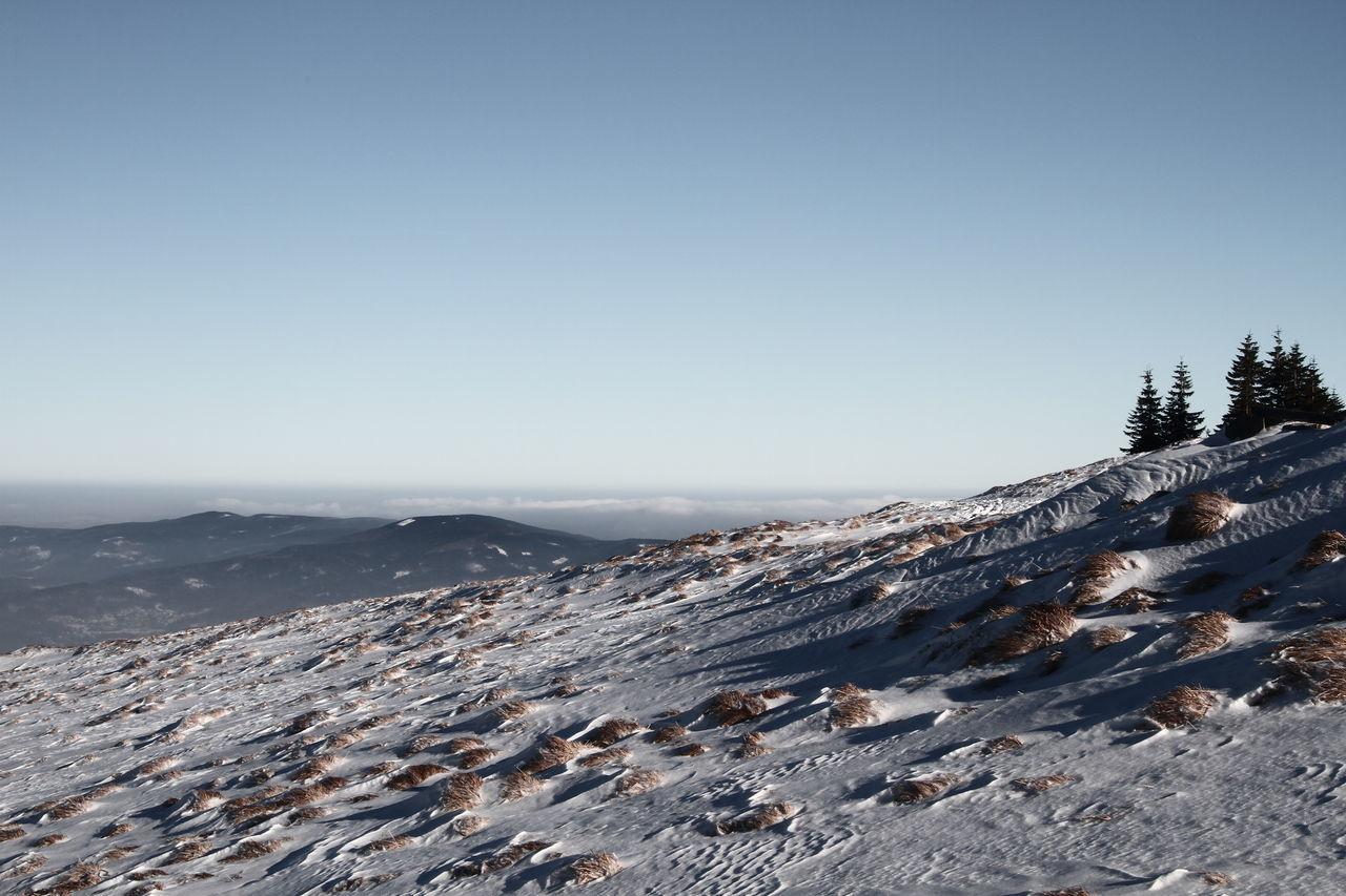 Karpaty Mountain Samotnia Samotnia View Sky Snow Snowy Mountains Trees Winter