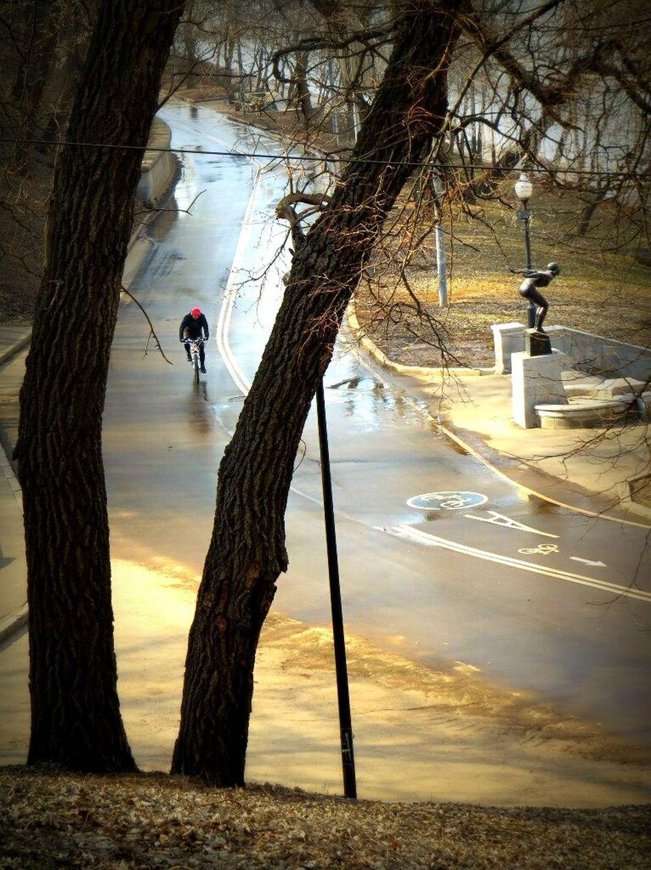 улицымосквы нескучныйсад ПаркГорького Moscow Москва Родныеместа Melancholic Landscapes Street Capturing Freedom Nature On Your Doorstep