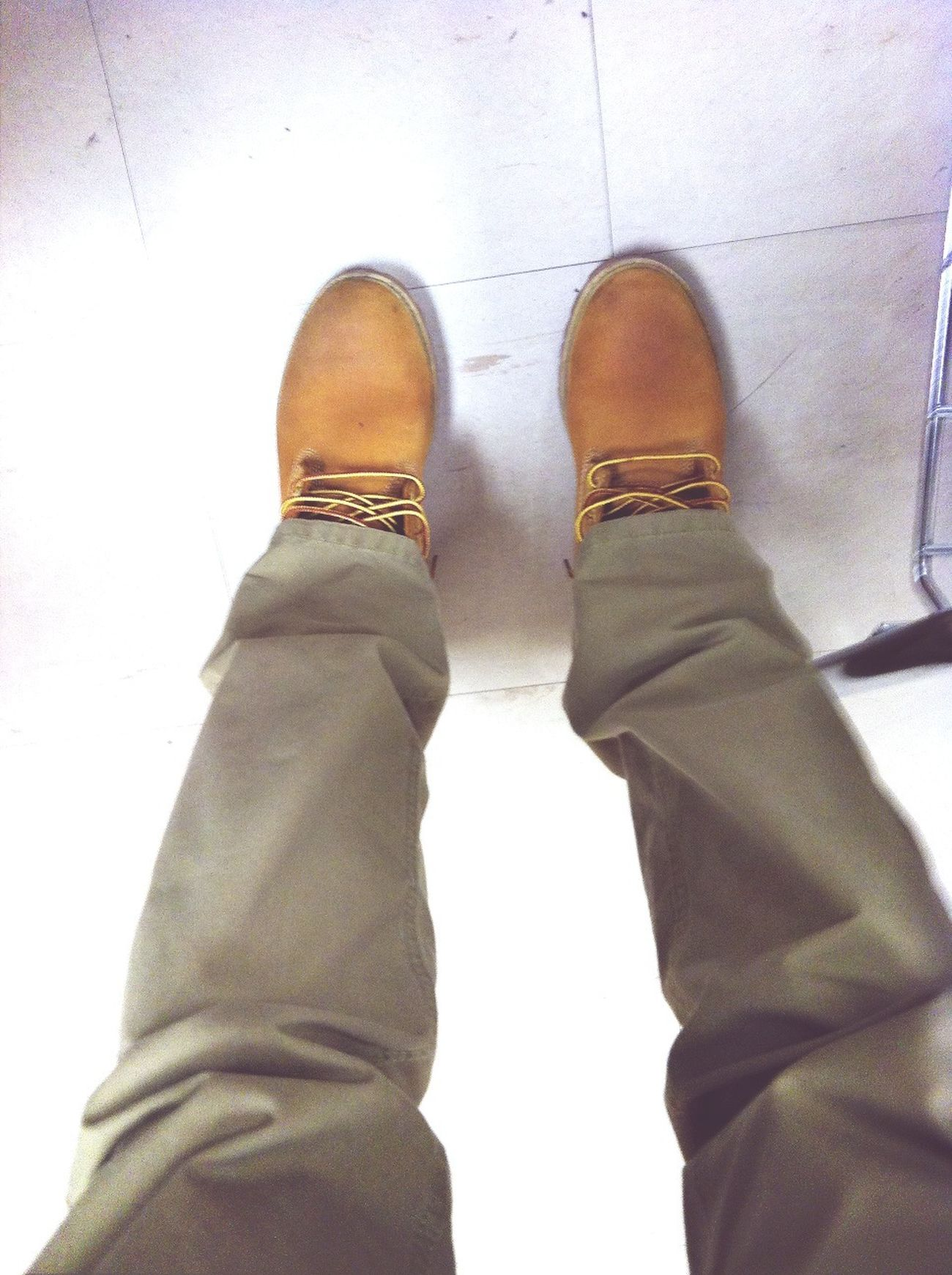 #Kotd#Wheats#Polo#Flee