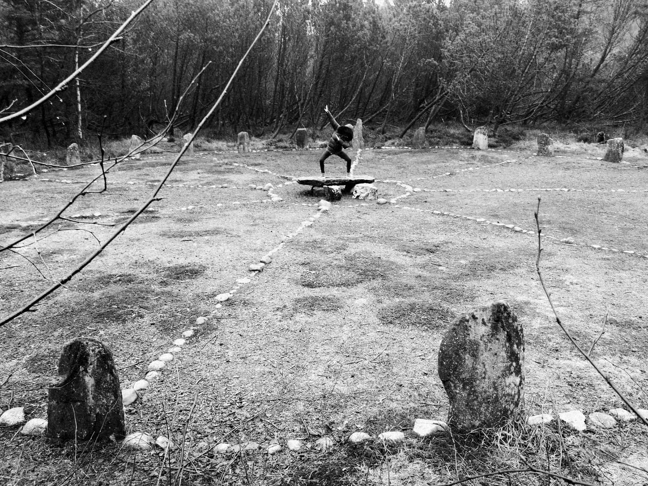 Domsteinane Sola Tree Woods Monochrome Stoneage Dance Gods Science Rain Nature Outdoors Archeology Stone Age Sacrifice Sacred Sacred Places Geometry Sacrificing EyeEmNewHere