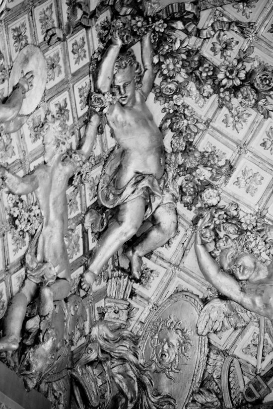 Indoors  Branch Full Frame Creativity Young Adult Wall Decoration ArtWork Indoor Photography Wall Art Versailles Palace Black And White Black & White Art And Craft Sculpture Wall Decor Versailles Decoration Decorative Louis XIV Detail Of Castle Palace Overdone Arts And Crafts