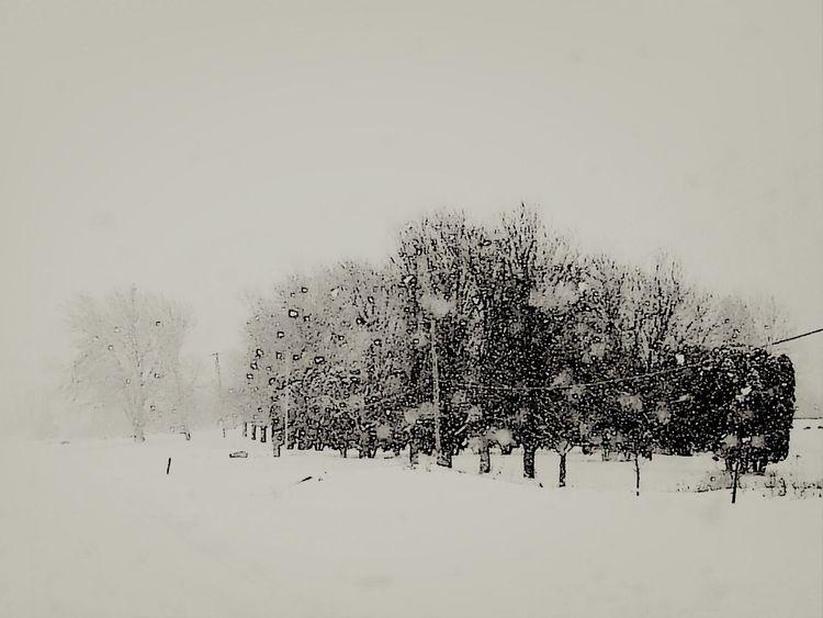 Snow ❄ Winter 2013-2014♥ Eye Em Snowscapes Eyeem Shot As Is