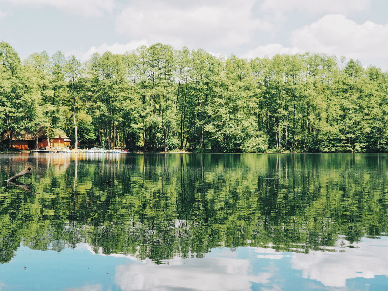 Reflection Tree Water Lake Cloud - Sky Sky Outdoors Day No People Nature Symmetry Beauty In Nature Lake View Lake Reflection Trees Shore Brandenburg Wandlitz Nature Water Reflections Waterfront Boats And Water Boat Rental