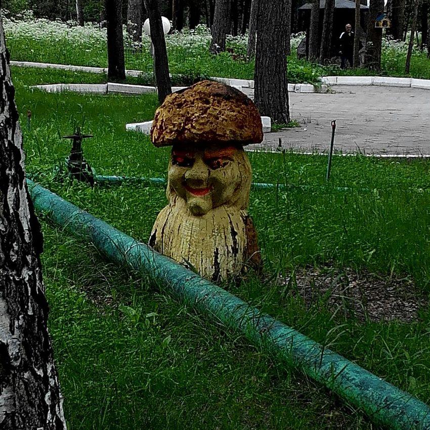 Fanny Devil Moshroom 😂😈😱 In Karkaralinsk Shakhter