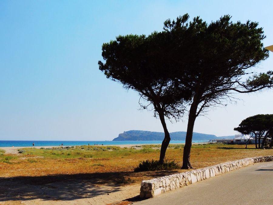 Neverending summer. Live from Cagliari. Sardegna Sardinia Cagliari Casteddu Beachphotography Getting Inspired La Sella EloediLo Poetto Life Is A Beach