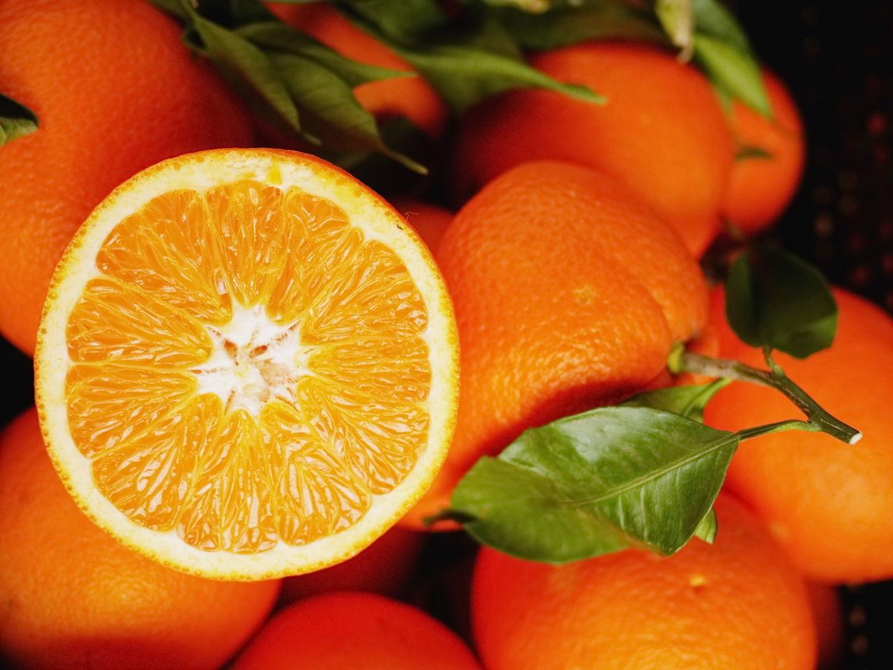 Citrus Fruit Close-up Day Food Food And Drink Freshness Fruit Healthy Eating No People Orange - Fruit Orange Color Orange Tree Outdoors