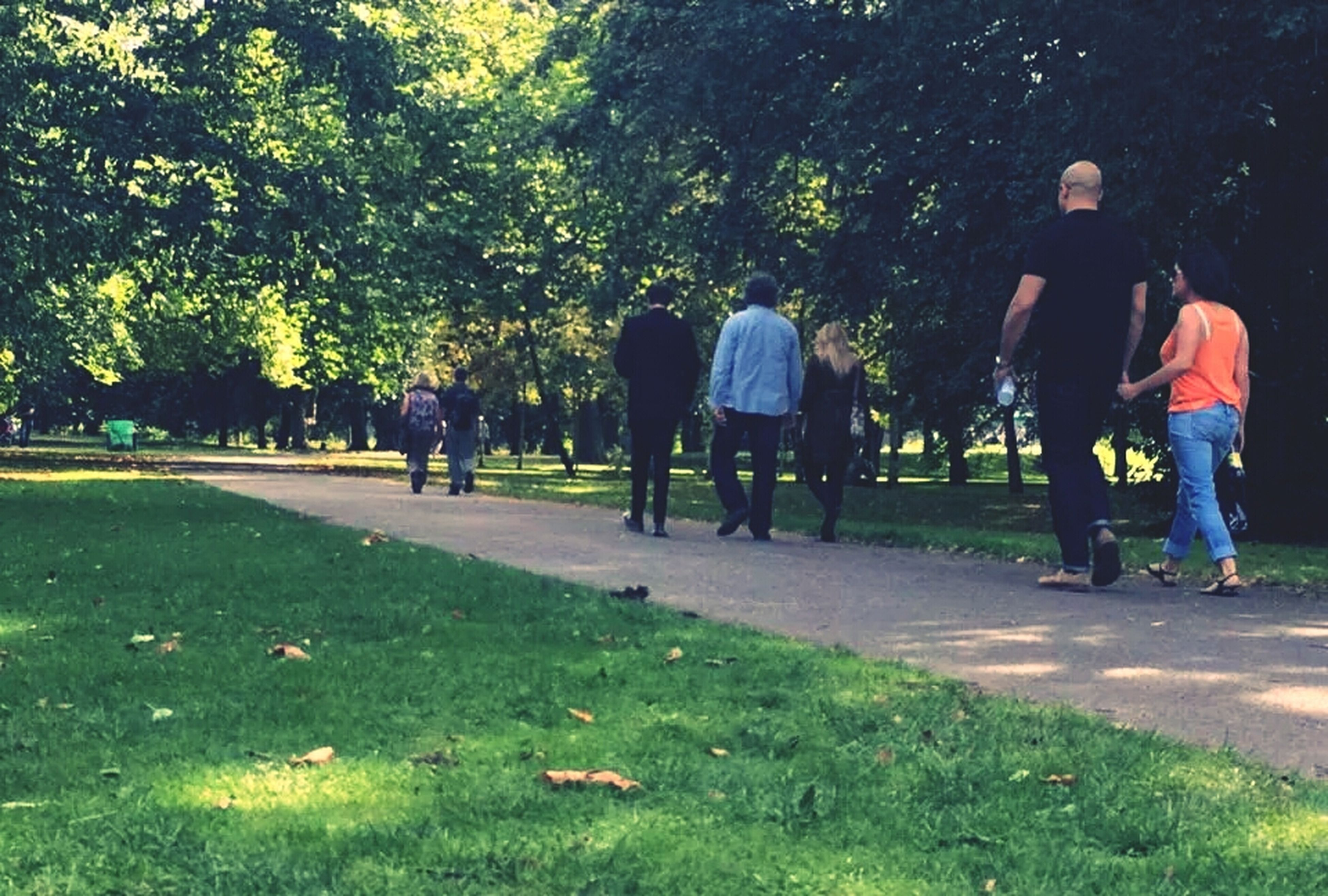 grass, men, lifestyles, leisure activity, walking, tree, rear view, person, full length, togetherness, park - man made space, casual clothing, green color, standing, bonding, park, day, nature