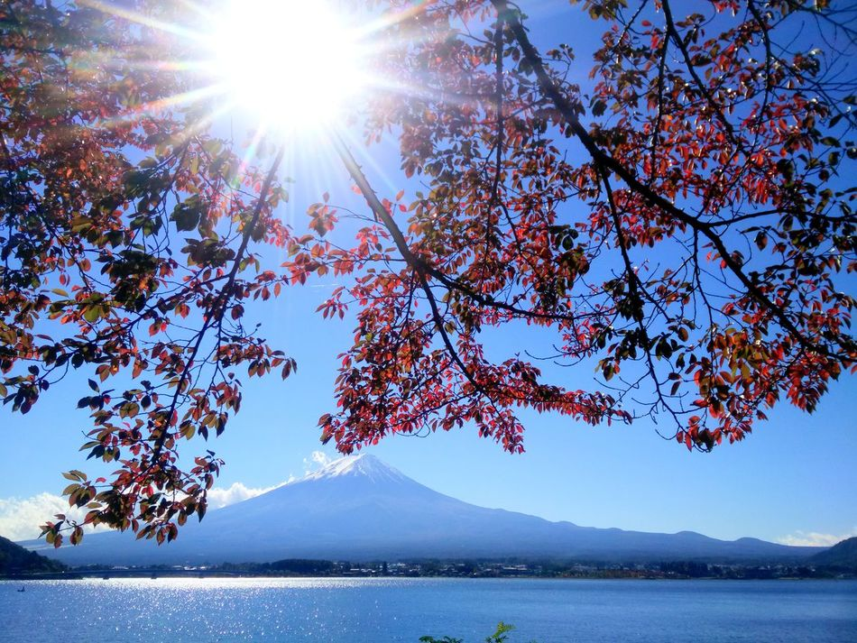Fuji Mountain Kawafujiko Japan Landscape Outdoors Beauty In Nature Nature Photography Enjoying Life Hello World Landscape_Collection From My Lens Viewpoint Taking Photos Relaxing Capture The Moment Journey Of Life Hanging Out