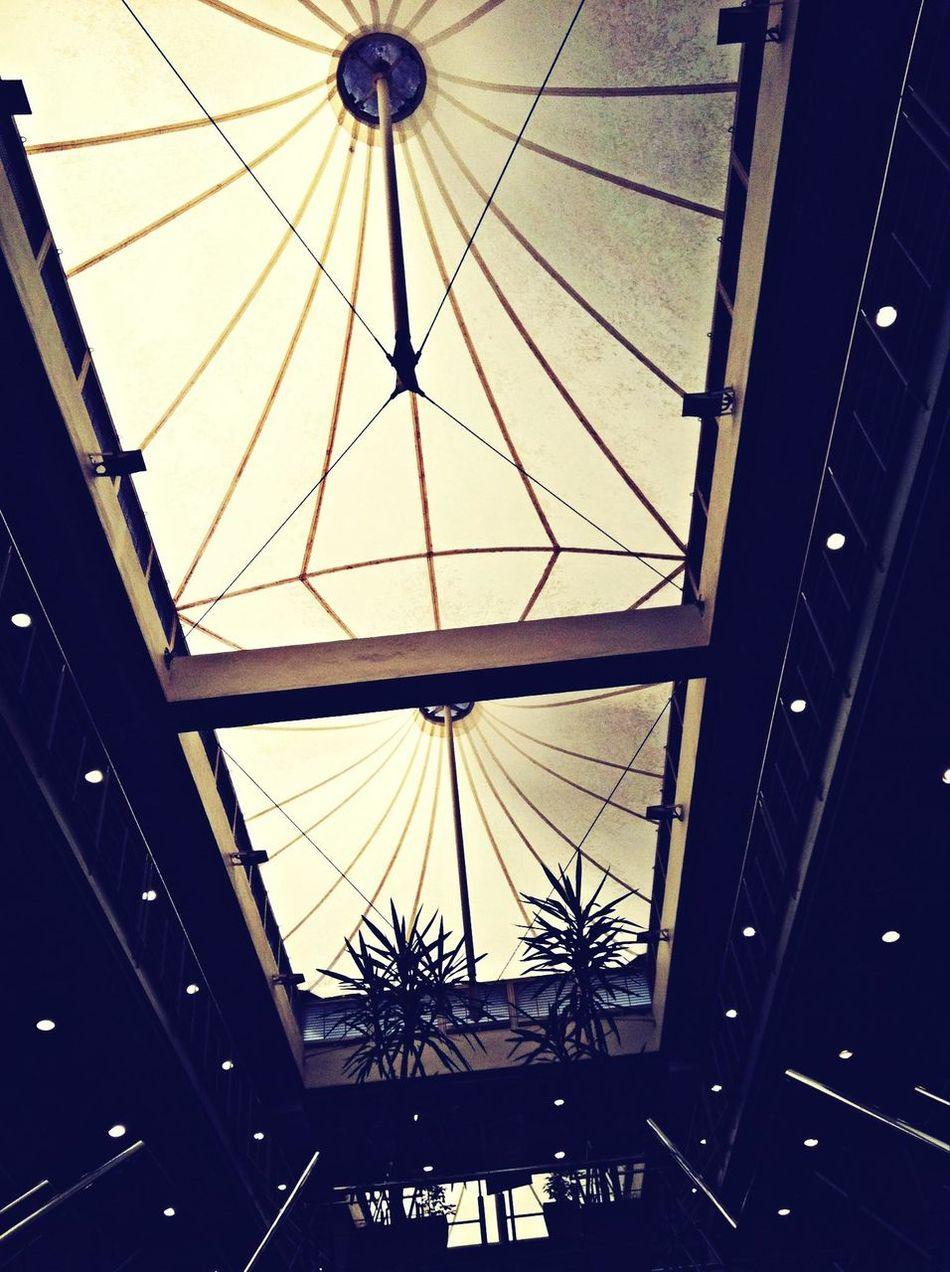 IT roof. Cput