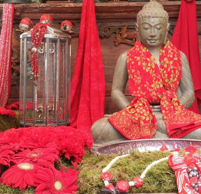 You like the red ???..y de repente recupero la pasión por el rojo 😍😍 Color_boom Taking Photos Red Live And Love Spiritualism