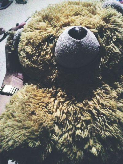 Teddybear Random Shot Bear Stuffedtoy