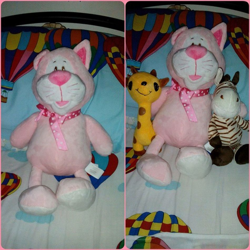 Welcome to the jungle, I mean my zoo Tamtam tammy! Why the name? Coz she looks like tom in TomAndJerry . Hehe. A post birthday gift from @iamyannavogue. Thank you be. Stuffedtoy Stuffedcat Pink love blessed birthdayspecial potn instapic instapost instagood ig Pixlr nofilter