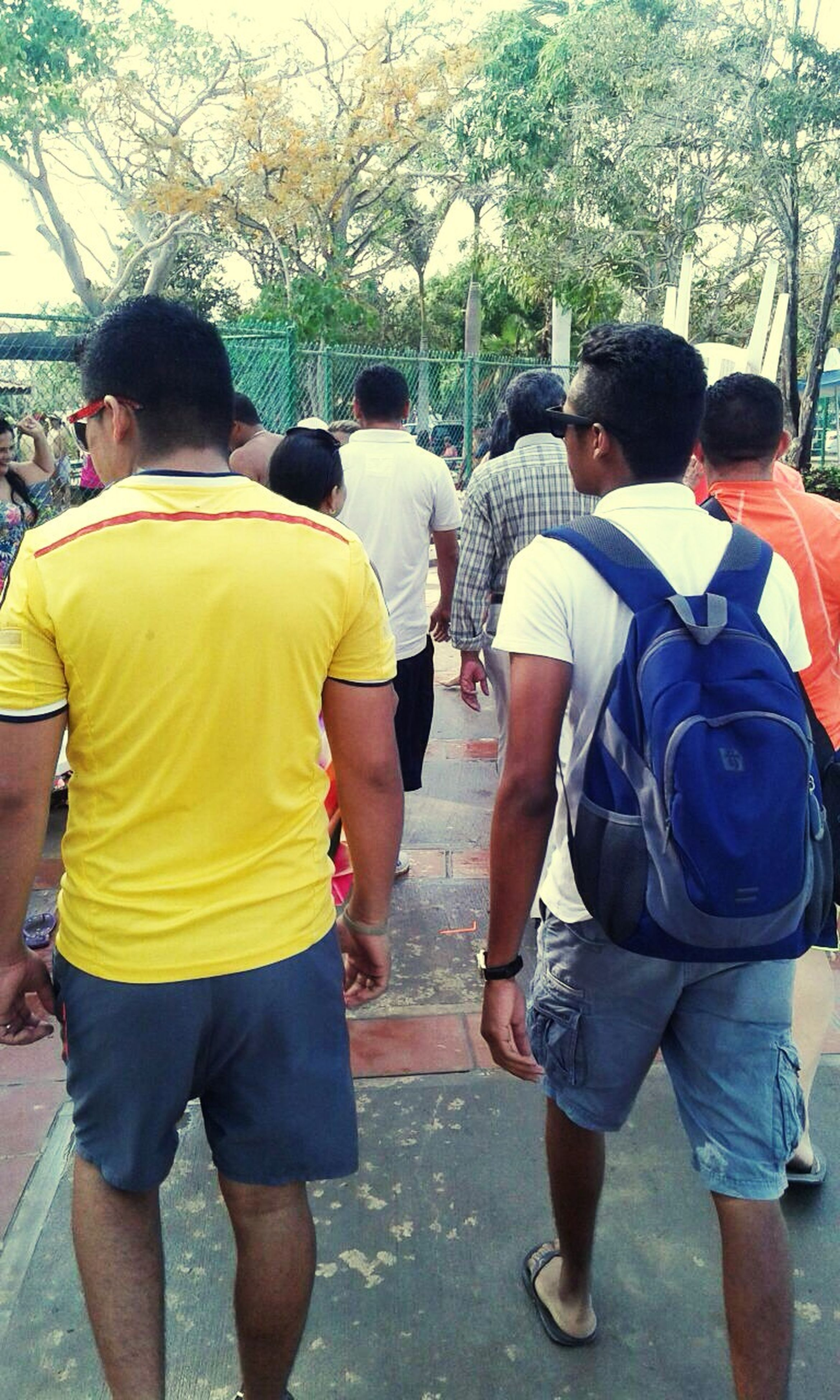 lifestyles, men, rear view, togetherness, leisure activity, casual clothing, bonding, tree, person, full length, walking, friendship, love, standing, backpack, holding hands