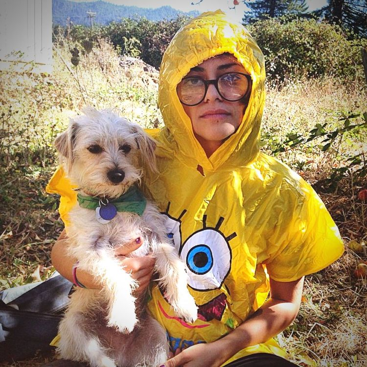 Dog Domestic Animals Pets One Animal Looking At Camera Portrait Mammal Front View Holding Smiling Person Yellow Pampered Pets Casual Clothing Loyalty Brown Zoology Weed Trimming Jizzycreams Best Team Ever Spongebob Street Fashion Humboldt Outdoors Outdoor Life