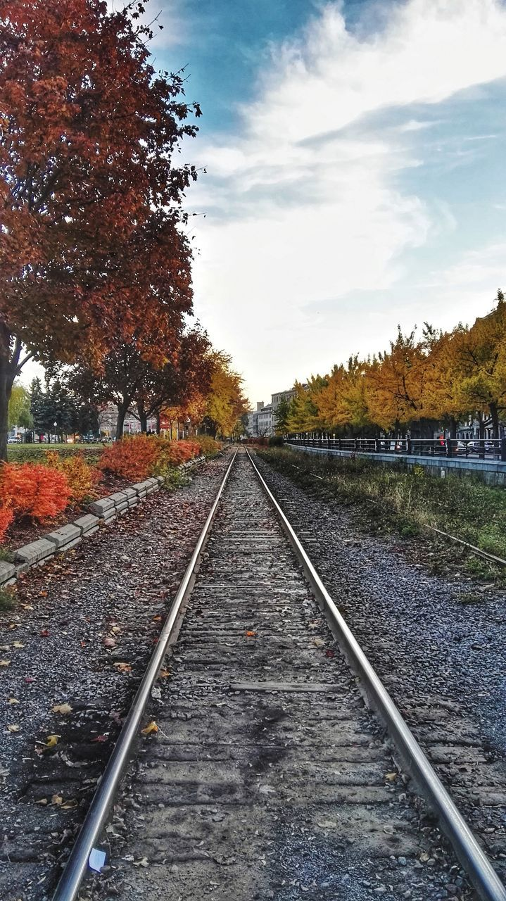 railroad track, rail transportation, diminishing perspective, transportation, tree, the way forward, no people, sky, railway track, outdoors, landscape, nature, day, beauty in nature, scenics, tranquility, straight, growth