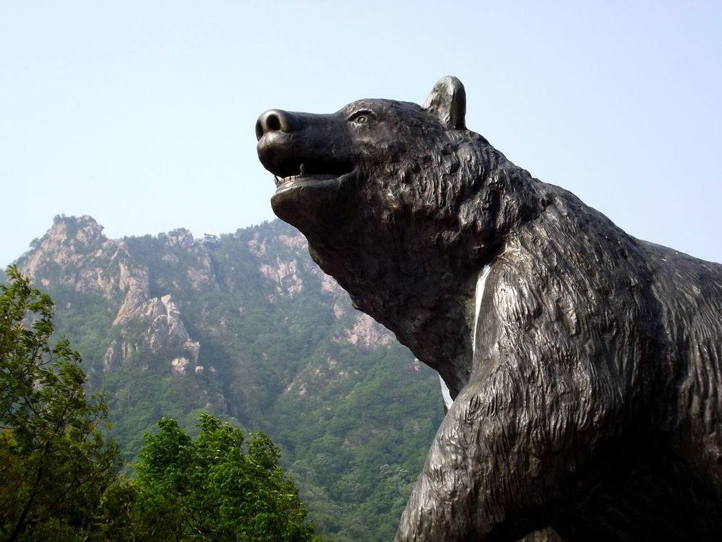 South Korea Sky Outdoors Low Angle View No People Korea Nature Statue Bear Bear Statues Mount Sorak Mount Sorak, Korea Seoraksan Seoraksannationalpark