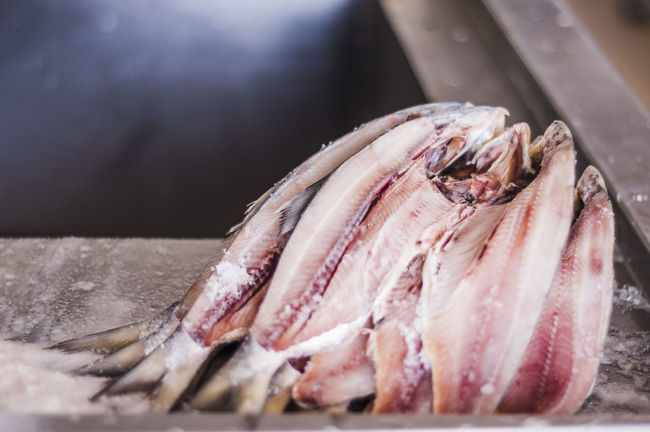Animals Close-up Dead Fısh Food For Sale Freshness Marine Life Raw Retail  Salted Fish Seafood Stacked Still Life Water Creatures Wet Market