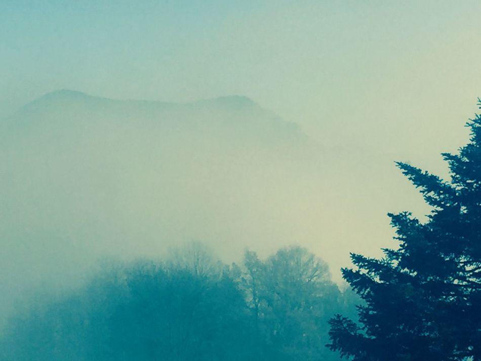 Fog Foggy Landscape Mountains Campelles