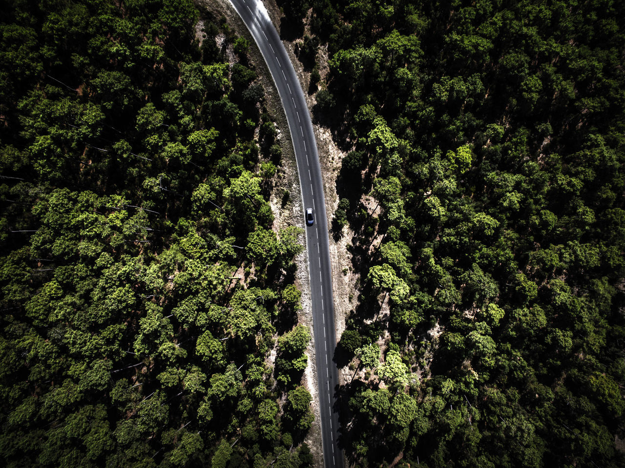 Aerial Photography Aerial Shot Aerial View Beauty In Nature Car Day Driving Flying High Green Color Lush Foliage Nature No People Outdoors Pine Tree Plant Road Roadtrip Scenics Tree View From Above