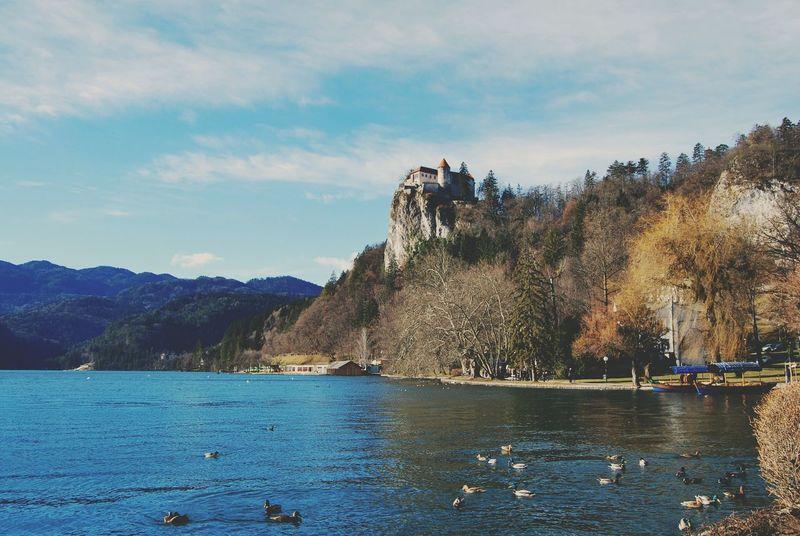 Bled, Slovenia Castle Lake EyeEm Nature Lover