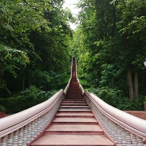 Stairs up to a volcano while travelling in Thailand. Stairway Stairs Stairsporn Stairs In Nature Staircase Vertigo Thailand Trip Thailand Thailandtravel Outdoors Volcano Thai Architecture Tree Bridge - Man Made Structure Footbridge Nature Forest Connection No People Day Travel Travel Photography Travel Destinations Travelling