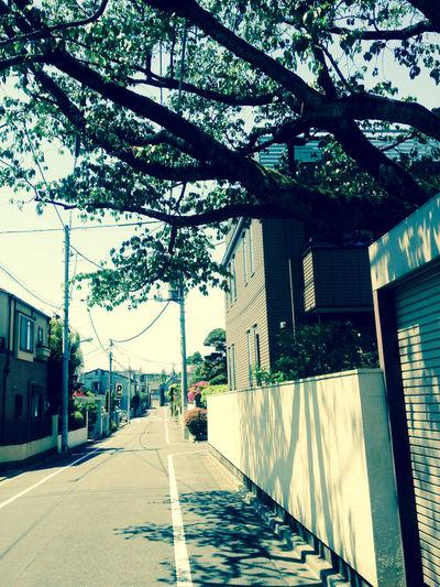 時をかける少女 映画 ロケハン 故郷 想い出 想い出の学生寮は、今はもうない。 Movie Location
