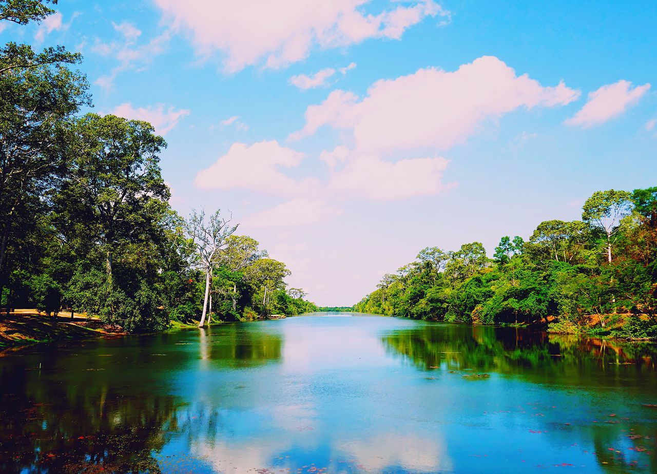 the serene moat surrounding the ancient Angkor Thom in Cambodia Reflection Tree Water Tranquility Beauty In Nature Scenics Tranquil Scene Nature Sky Outdoors Lake No People Cloud - Sky Day Growth
