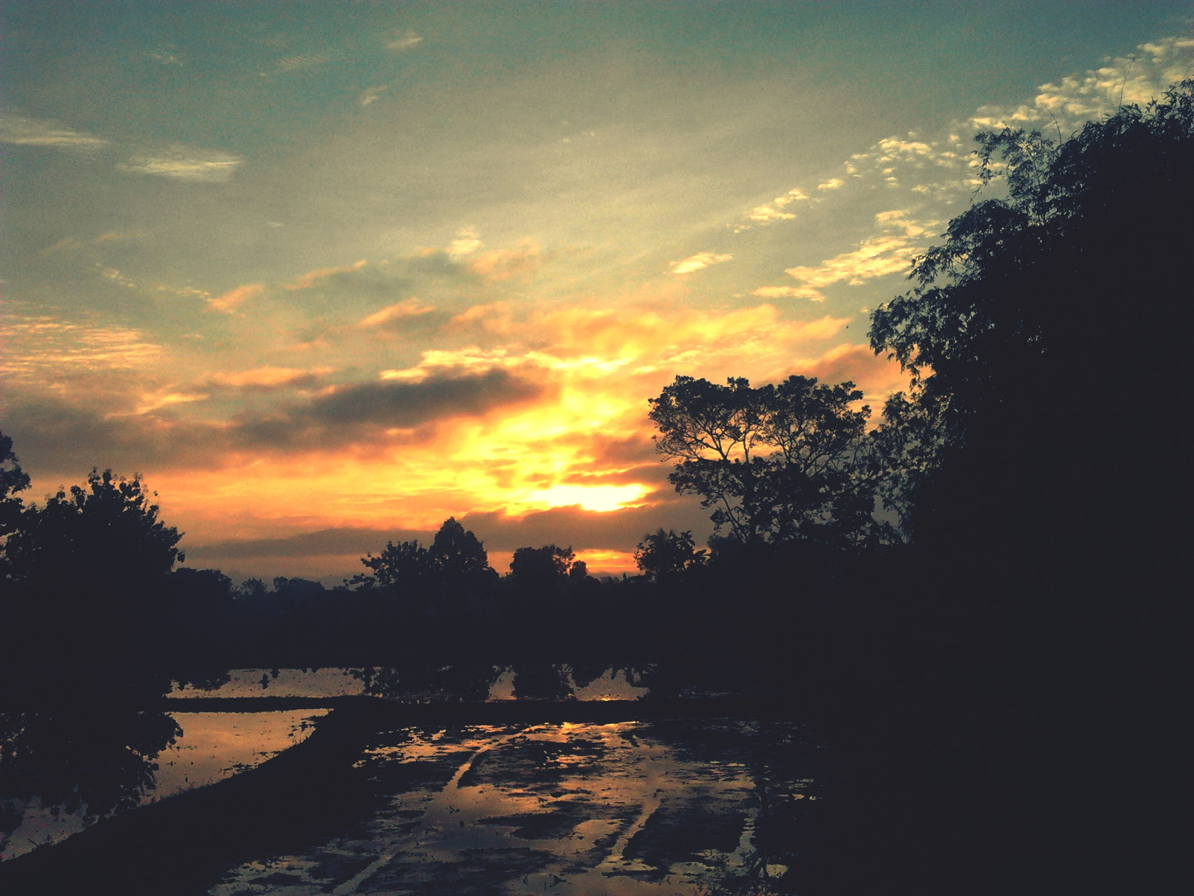 sunset, tree, sky, cloud - sky, scenics, beauty in nature, orange color, silhouette, nature, high angle view, tranquil scene, tranquility, water, building exterior, built structure, outdoors, architecture, river, cloudy, cloud
